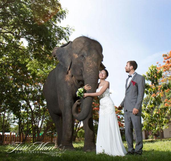 Houston Wedding Photographers: Jessi Marri Photography